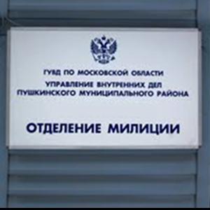 Отделения полиции Большого Солдатского