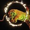 Цирки в Большом Солдатском